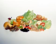 A pile of food waste (from WRAP)